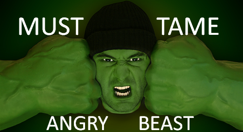 HOW TO TAME YOUR ANGRY BEAST